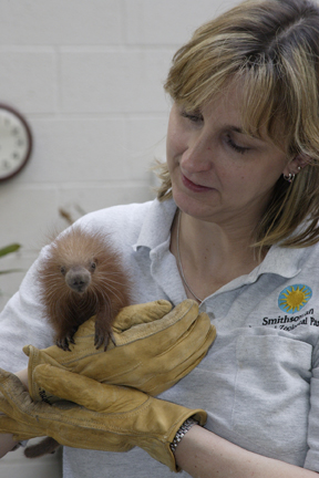 July 19-25 is National Zookeepers Week