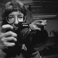 Jessie Cohen and a White's Tree Frog