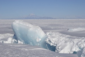 In this photo of a pressure ridge, the blue underside of a slab of sea ice protrudes up through the surrounding ice. Shifting annual sea ice, pushing against the permanent Ross Ice Shelf, creates pressure ridges of uplifted ice. (Photo by Steven Profaizer, National Science Foundation)