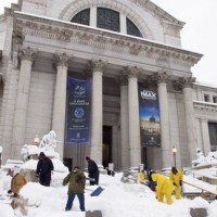 National Museum of Natural History in snow