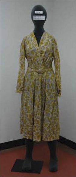Rosa Parks Dress
