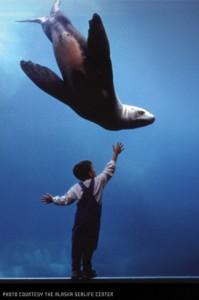 Image courtesy of the Alaska Sealife Center