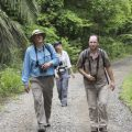 ASU scientists Dave Pearson, Juergen Gadau and Smithsonian researcher Kate Ihle walk through field site in Panama. Vidyo technology will bring real time video from Smithsonian tropical research sites into classrooms and connect Smithsonian researchers with ASU students and faculty