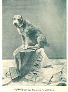 """As a writer for the Railway Mail Service clerk's newsletter, the """"RMS Bugle"""" noted, it was almost impossible to get Owney to sit for a photograph unless he was able to sit on mailbags."""