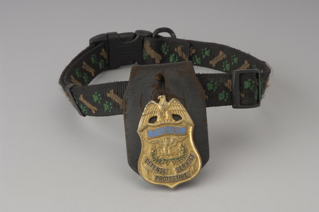 dog collar with badge