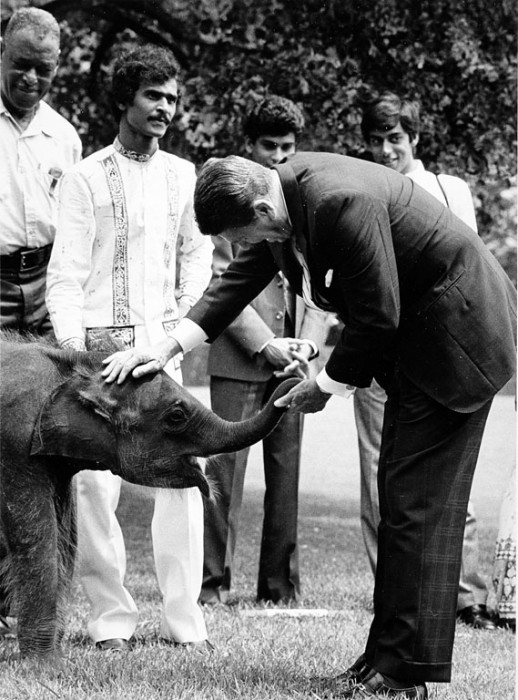 Jayathu receives a pat from President Ronald Reagan. (Photo by Jessie Cohen)