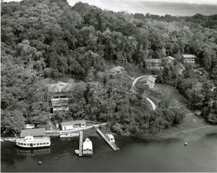 Aerial view of Barro Colorado Island shows the docks with boats tied up to them, and new dormitory facilities for students and visiting scientists. For 70 years, the 3,600-acre island has been one of the leading field stations for research in tropical biology. In 1924 the Barro Colorado Island Biological Laboratory officially opened in the Panama Canal Zone. More than thirty scientists from the United States worked at the island laboratory during its first year of operation. The laboratory later came under Smithsonian Institution aegis as the Smithsonian Tropical Research Institute. (Photo by Carl Hansen, as featured in Smithsonian Institution Research Reports, Spring 1993)