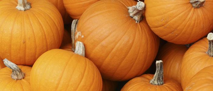 The Great Pumpkin has risen