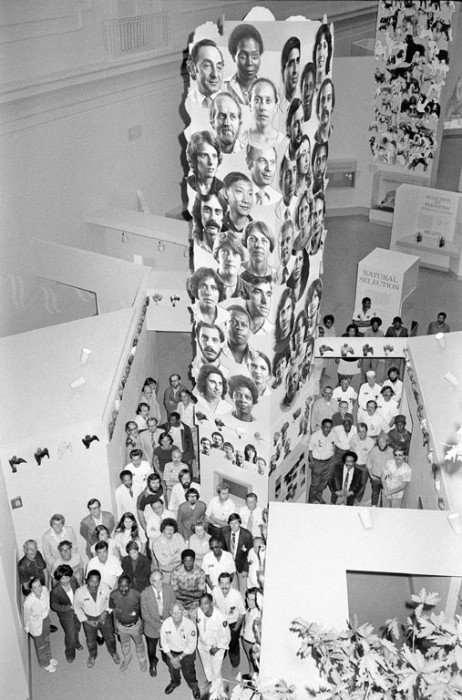 """The """"Dynamics of Evolution,"""" exhibit in the Smithsonian's National Museum of Natural History seen from above. A group of Smithsonian staff members pose for a photograph in the """"Dynamics of Evolution"""" exhibition next to the """"People Tower"""" and the """"Dog Tower. The """"People Tower"""" is covered with more than 100 larger than life-size photos of faces showing genetic traits, such as blue or brown eyes, or black or blond hair. The """"Dog Tower"""" illustrates how """"artificial"""" selection by human beings has influenced an animal's evolutionary history."""