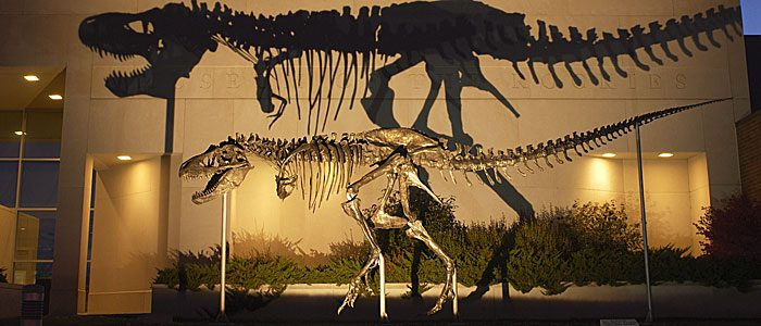 Make no bones about it: We're pretty excited to welcome one of the world's most famous fossils
