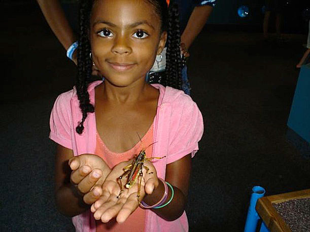 A trip to the Insect Zoo, from Wanda W.