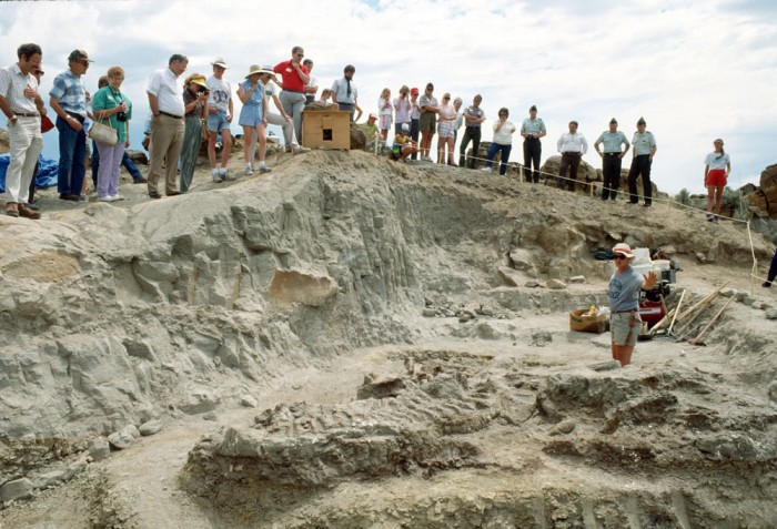 Graduate student Scott Sampson, foreground, describes skeletal structures of exposed Wankel T.rex fossils for visitors and U.S. Army Corps of Engineer officials at the excavation site near Fort Peck, Mont., June, 1990. The specimen was found on Federal land under the jurisdiction of the Corps and is the property of the U.S. Government. (Photo courtesy Museum of the Rockies)