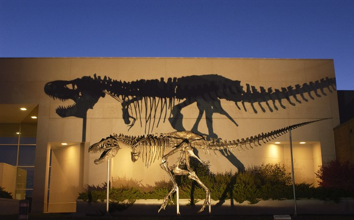 A bronze cast of the Tyrannosaurus rex skeleton known as the Wankel T.rex was installed in front of the Museum of the Rockies at Montana State University in Bozeman, Montana in 2001. (Photo courtesy Museum of the Rockies)