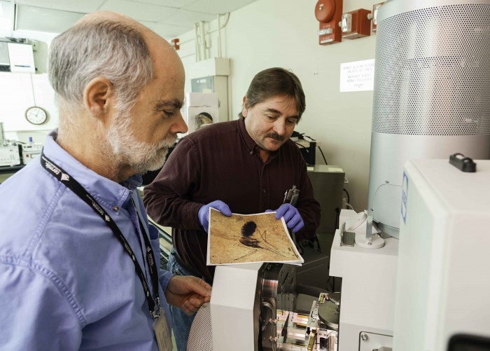 Dale Greenwalt, left, and Tim Rose of the Department of Mineral Sciences at the Smithsonian's National Museum of Natural History, use an energy-dispersive X-ray spectrometer to study the blood deposits in the fossil of a prehistoric mosquito. (Photo by James DiLoreto)