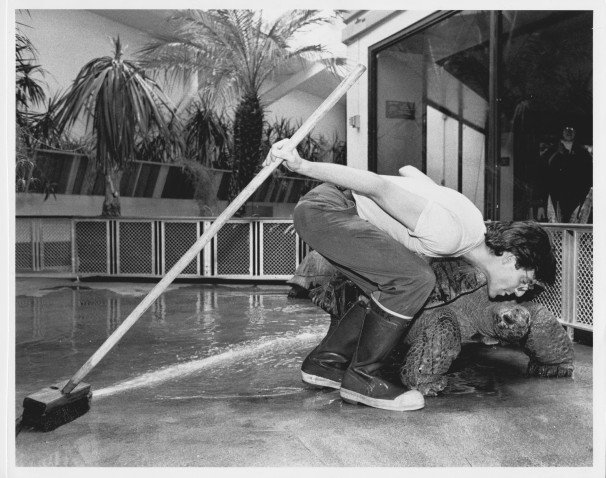 David Kessler kisses an Aldabra giant tortoise in this undated photo. (Courtesy of the National Zoo)