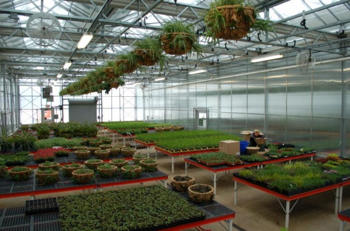 Smithsonian Gardens' greenhouse facility in Suitland, Maryland