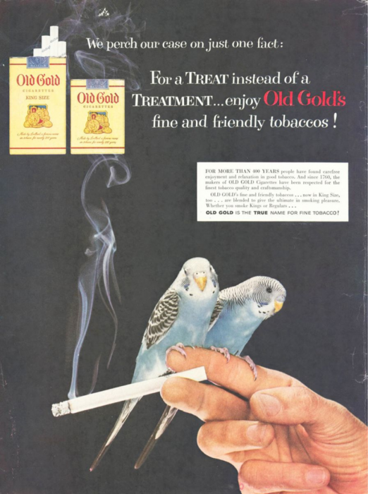 Old Gold ad with parakeets
