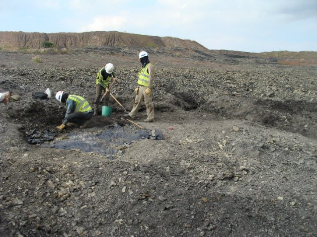 A Smithsonian team excavates a crocodile fossil in the Cerrejón coal mine in Colombia.
