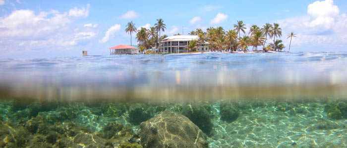 The Caribbean Coral Reef Ecosystems Program is a long term field site dedicated to investigations of coral reefs and associated ecosystems. Field operations are based at the Carrie Bow Cay Field Station on the Meso-American Barrier Reef in Belize. (Photo by R. Ritson-Williams)