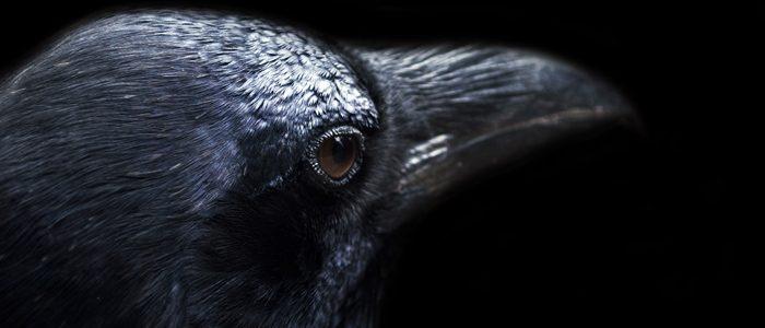 The (still) mysterious death of Edgar Allen Poe