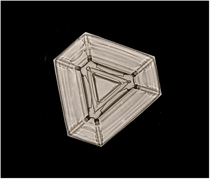 A Plate Snowflake, Smithsonian Institution Archives, Record Unit 31, Box 12, Folder 17, Negative no. 801
