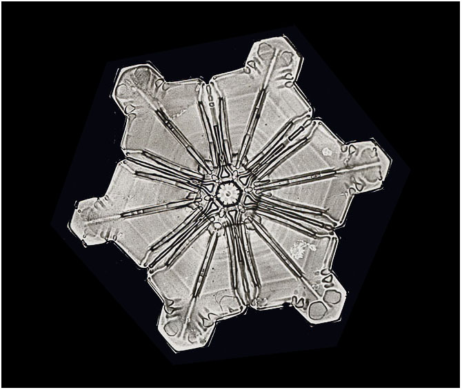A Star Crystal Snowflake, Smithsonian Institution Archives, Record Unit 31, Box 12, Folder 17, Negative no. 976