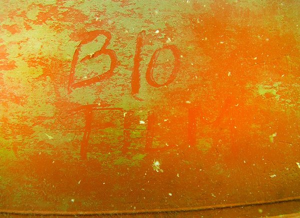 Biofilms are microorganisms that accumulate in layers on the ship's hull. (Photo by Laurie Penland)