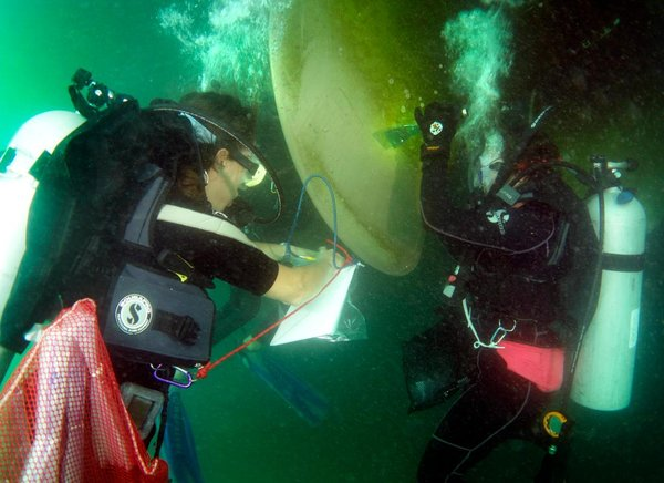 Samples are sealed in a plastic bag and dropped into a mesh bag clipped to the divers' gear. (Photo by Laurie Penland)