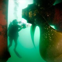 The ship's propeller dwarfs the divers. (Photo by Laurie Penland)