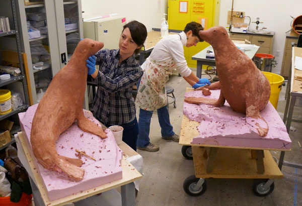 Exhibit designer Kristen Orr (left) and Lora Collins, studio supervisor of the Office of Exhibits Central, craft sculptures that will be installed in the sea lion exhibit along the American Trail at the National Zoo. (Photo by Brigid Laurie)