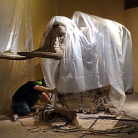 Before the Stegomastodon could be moved, the surrounding exhibiti flooring had to be pried away--a dusty job.