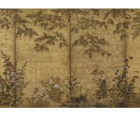 """Mimosa Tree, Poppies and Other Summer Flowers. """"Inen"""" seal; Japan, Edo period, 1630-1670; Screen (four panel); ink, color and gold on paper; H x W: 167.4 x 353.4 cm (65 7/8 x 139 1/8 in); Gift of Charles Lang Freer, F1902.92; Freer Gallery of Art, Smithsonian"""