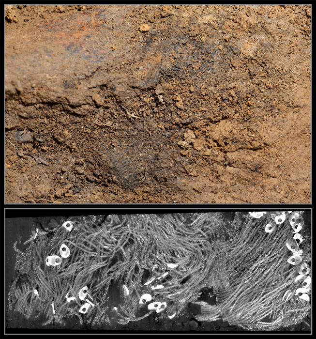 The Jamestown research team used a micro-CT scan to reveal highly decayed remnants of a military leader's sash buried in a block of surrounding soil in the grave of Capt. William West. In July 2015, a team of scientists from the Smithsonian's National Museum of Natural History and Jamestown Rediscovery announced the identities of Rev. Robert Hunt, Capt. Gabriel Archer, Sir Ferdinando Wainman and Capt. William West, high-status leaders who helped shape the future of America during the initial phase of the Jamestown colony. Image credit: Donald E. Hurlbert / Smithsonian Institution (Top); Mark L. Riccio / Cornell BRC CT Imaging Facility (Bottom)