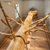 John Grade, Middle Fork, 2015 Renwick Gallery of the Smithsonian American Art Museum Photos by Ron Blunt