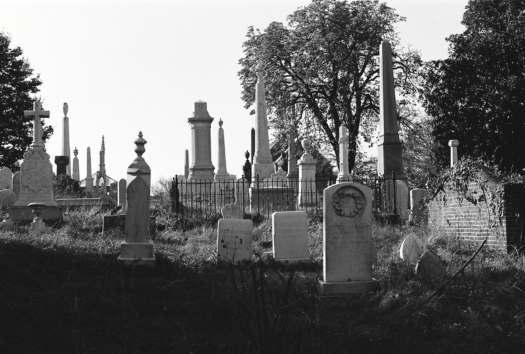 neglected graves