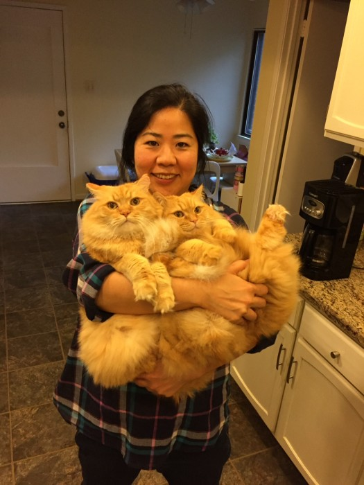 Junko holding two cats