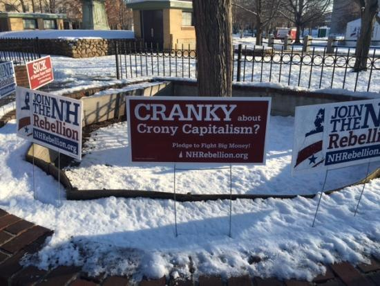 "Lawn signs, most prominently ""Cranky About Crony Capitalism"""