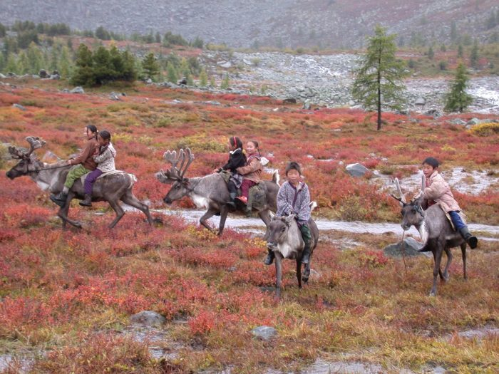 Mongolian children riding reindeer in field of autumn colored grasses