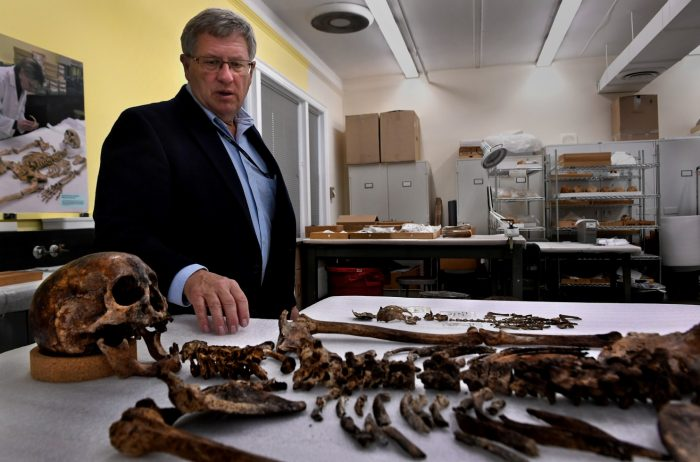 Owsley stands looking at bones spread on table