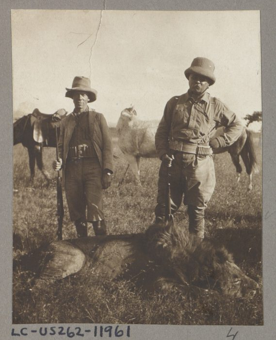 Old photo of Roosevelt andanother man with dead lion at their feet.