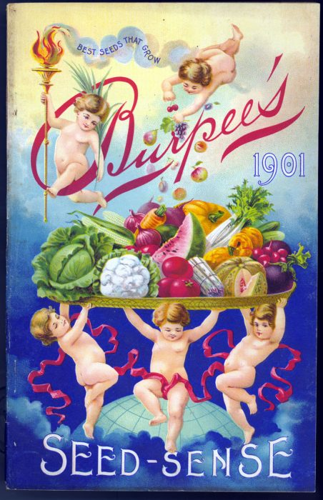Seed catalog cover showing cherubs holding vegetables