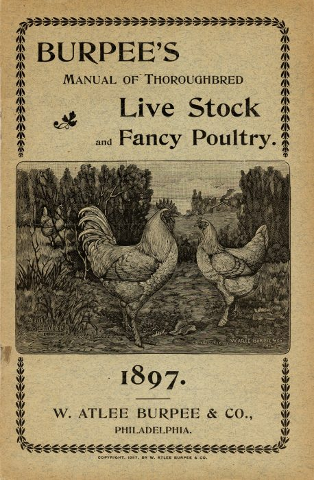 Catalog cover with drawing of chickens