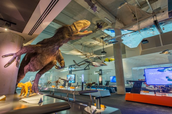 Exhbition gallery with dinosaur and aircraft