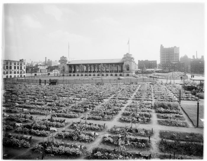 Garden plots with ampitheater and city streets in background