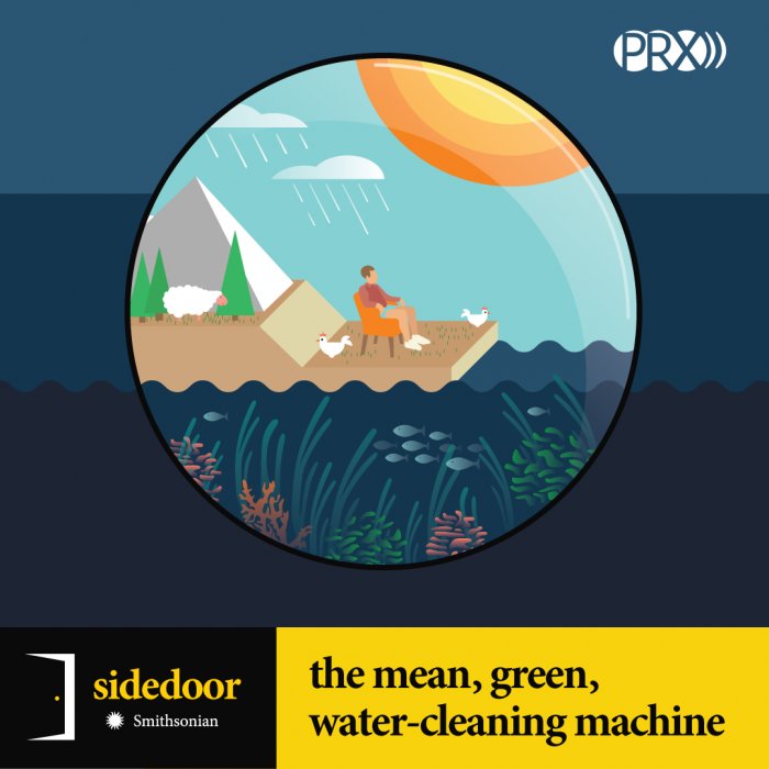 Sidedoor: The mean, green, water-cleaning machine