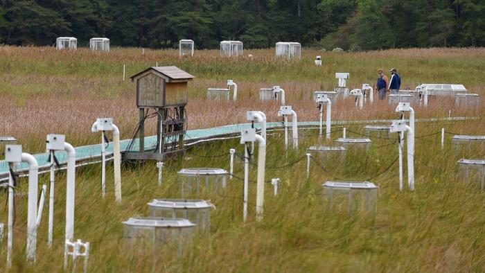 Marsh with boardwalk and measuring stations