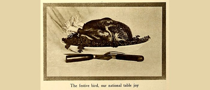 Take a trot through our collections for all things turkey