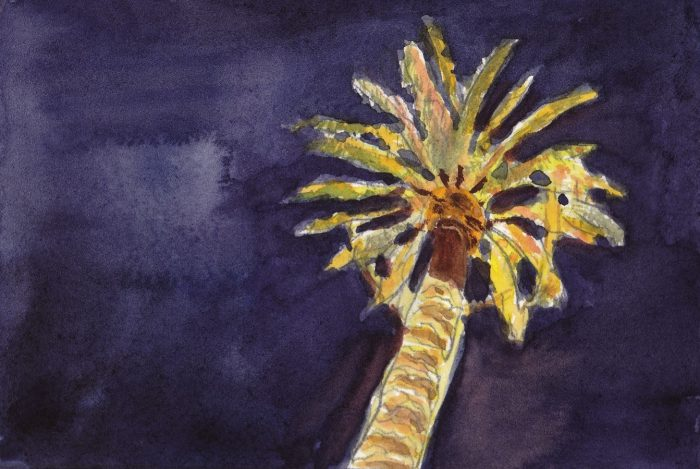watercolor of palm tree with Christmas lights