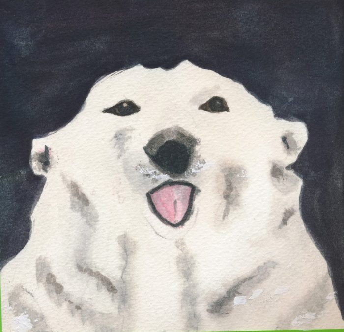 watercolor of polar bear