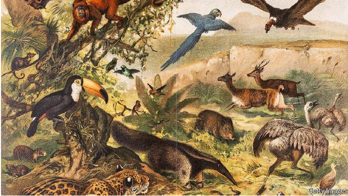 Painting showing different species of animal